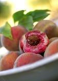 空白的桃子 免版税库存照片