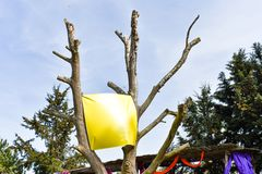 空白的横幅,垂悬在树 库存照片