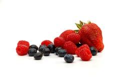 空白的浆果 免版税库存照片