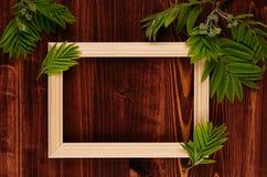 空白的照片木框架和年轻绿色叶子在葡萄酒褐色木板 与拷贝空间,上面的装饰夏天背景竞争 库存照片