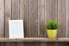 空白的照片框架和植物 图库摄影