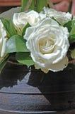 空白的玫瑰 免版税库存照片