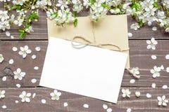 空白的白色贺卡和信封用春天开花的樱桃分支 免版税库存照片