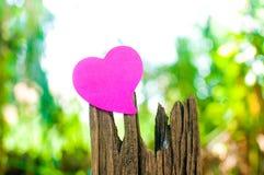 空白的笔记本或稠粘的笔记桃红色在木材与bokeh sunligh 免版税库存照片