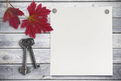 空白的纸片和红色在木背景离开 库存图片