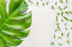 空白的纸片和绿色在大理石背景离开 免版税库存照片
