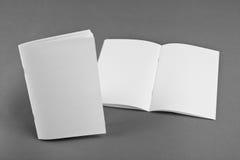 空白的编目,小册子,杂志,书嘲笑 免版税库存图片