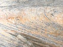 空白的老棕色木抽象背景和纹理 库存照片