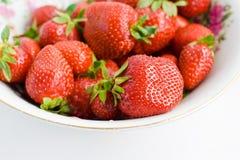 空白的草莓 免版税库存照片