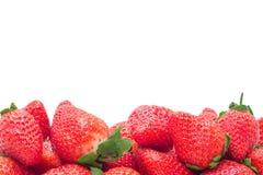 空白的草莓 免版税库存图片