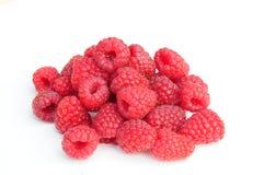 空白的莓 免版税图库摄影