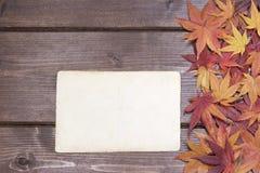 空白的葡萄酒照片秋天概念 免版税库存图片