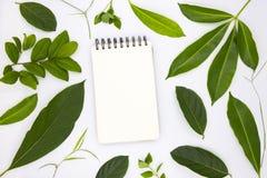 空白的螺旋笔记薄和绿色夏天叶子在白色背景 与绿色叶子的垂直的写生簿大模型 免版税图库摄影