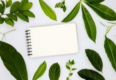 空白的螺旋笔记薄和绿色夏天叶子在白色背景 与绿色叶子的水平的写生簿大模型 库存图片