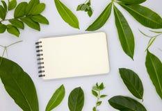 空白的螺旋笔记薄和绿色夏天叶子在白色背景 纸笔记本舱内甲板空的页放置照片 免版税库存照片