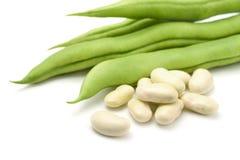 空白的豆 免版税库存图片