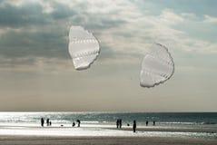 空白的风筝 免版税图库摄影