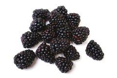 空白的黑莓 库存图片