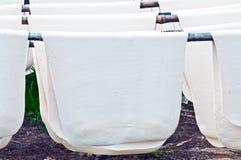 空白的rubbersheets 库存照片