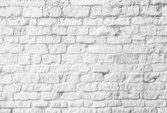 空白砖墙 免版税图库摄影
