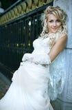 空白礼服的秀丽新娘 免版税库存照片
