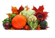 空白秋天的蔬菜 免版税库存图片