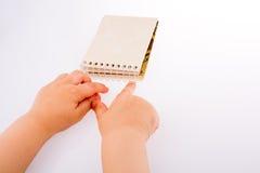 空白笔记本螺旋 免版税图库摄影