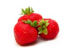 空白美丽的查出的草莓 库存照片