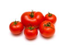 空白背景五的蕃茄 库存图片
