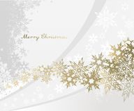 空白背景圣诞节查出的雪花 免版税图库摄影