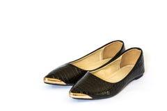 空白背景女性查出的皮鞋 库存图片