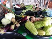 空白背景新鲜的庭院混杂的蔬菜 免版税库存照片
