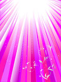空白背景桃红色的光芒 免版税库存照片