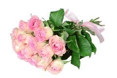 空白背景桃红色的玫瑰 免版税库存图片