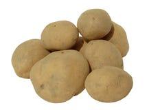 空白背景的土豆 免版税图库摄影