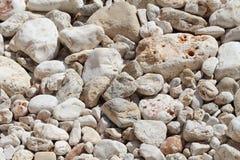 空白背景的小卵石 库存图片