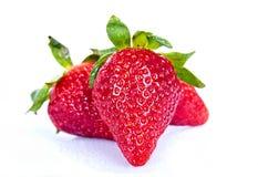 空白背景的草莓 库存照片