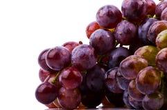 空白背景的葡萄 库存图片