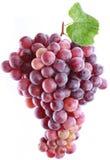 空白背景的葡萄 免版税图库摄影