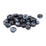 空白背景的蓝莓 库存照片