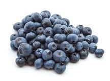 空白背景的蓝莓 图库摄影