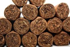 空白背景的雪茄 免版税库存图片