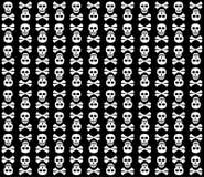 空白背景黑色的头骨 库存图片