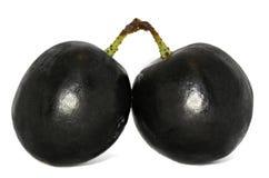 空白背景黑色的葡萄 免版税库存图片