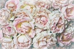 空白花束的玫瑰 免版税库存照片