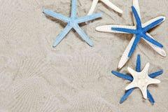 空白蓝色的海星 库存照片