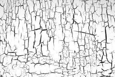 空白被绘的墙壁 免版税库存图片