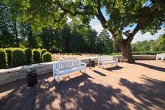 空白长凳在夏天庭院里 库存图片