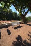 空白长凳在夏天庭院里 免版税图库摄影