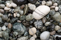 空白黑色的小卵石 库存图片